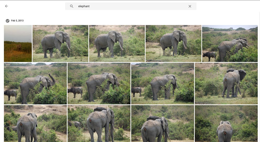 Google Photos Discovery