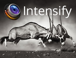 Intensify (a 2013 Best Mac App Store app by Apple) helps you reveal the hidden beauty of your images.