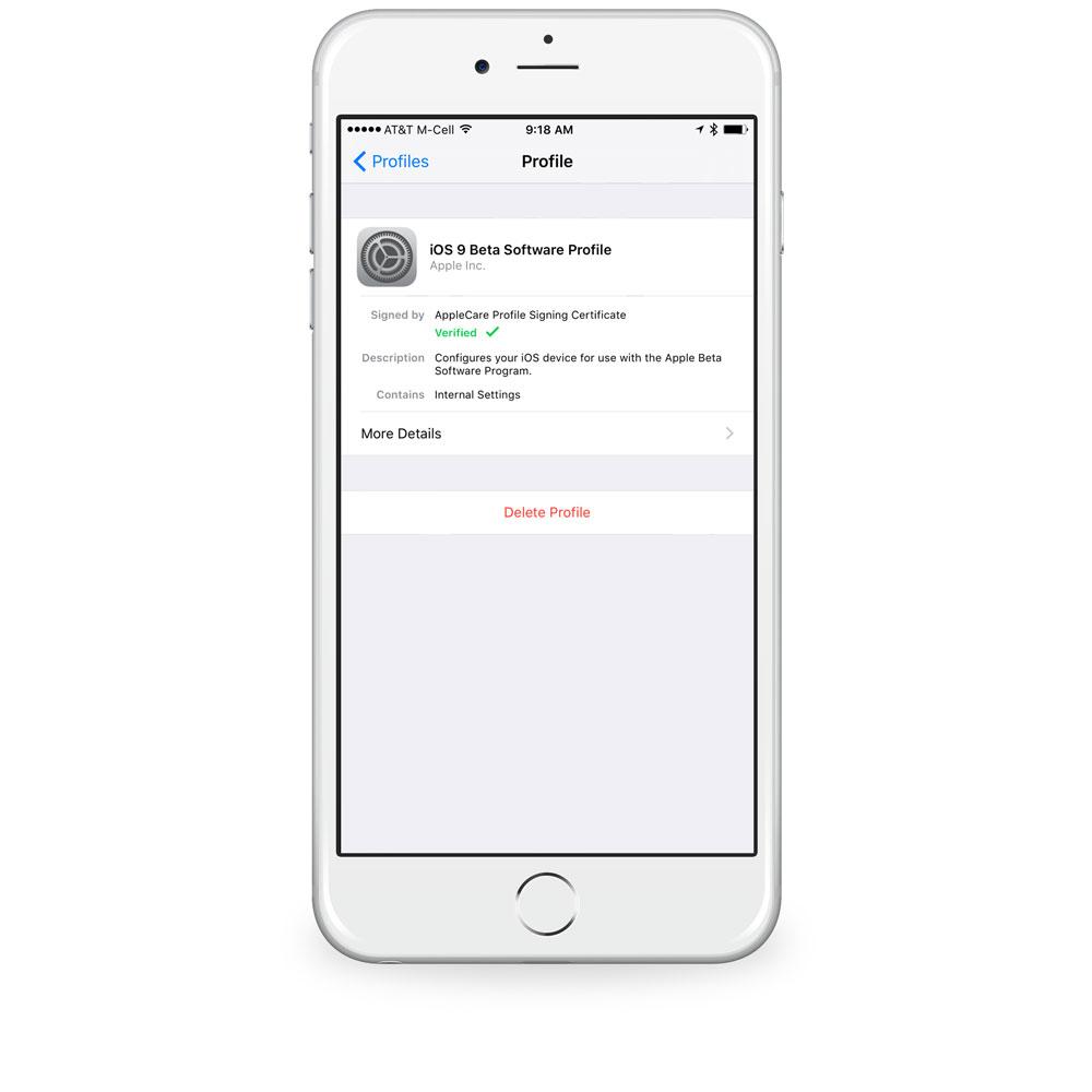 iOS public beta settings