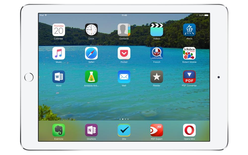 Ludovic Bubner's iPad