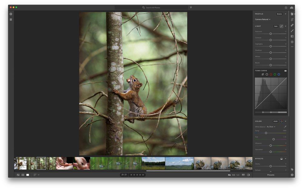 LR macOS iMac shot