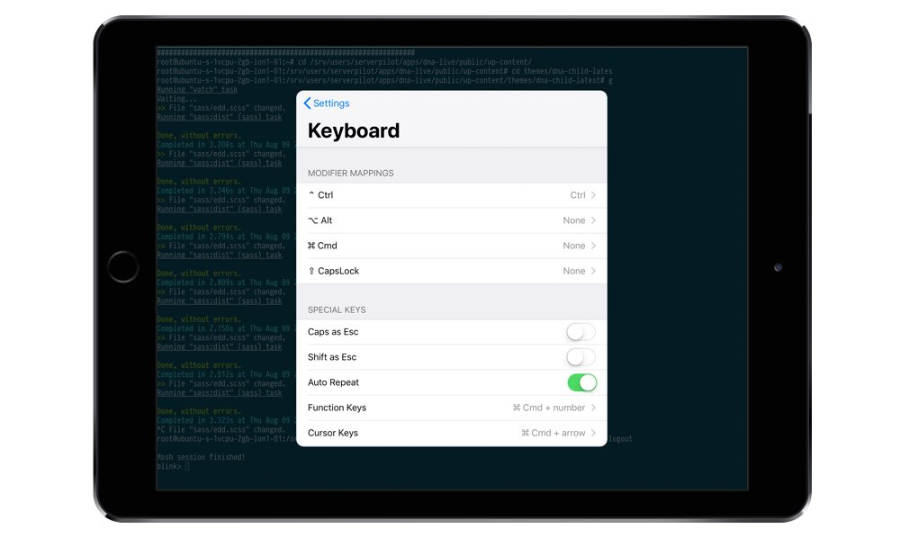 Keyboard modifier mapping's in Blink Shell for iOS