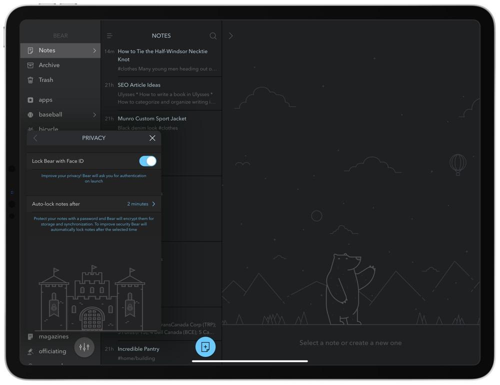 Bear 1 7 Introduces Security Features, New Safari Extension